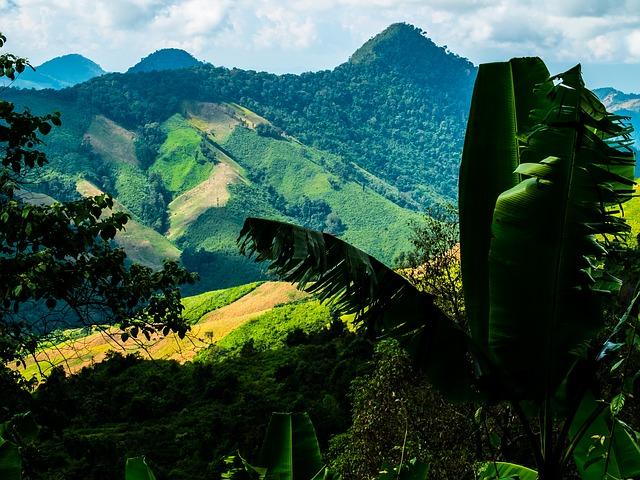 Taizemes džungļi un kalni