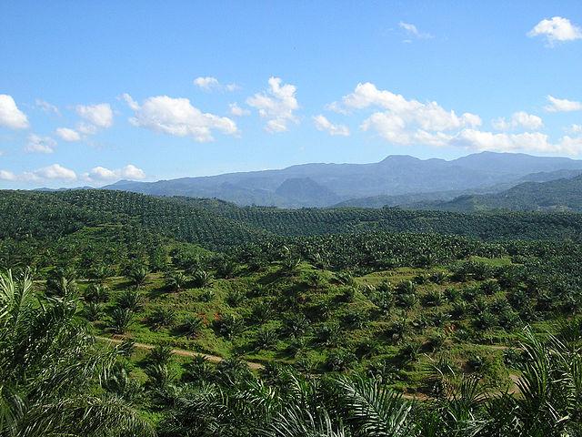 Indonēzijas daba